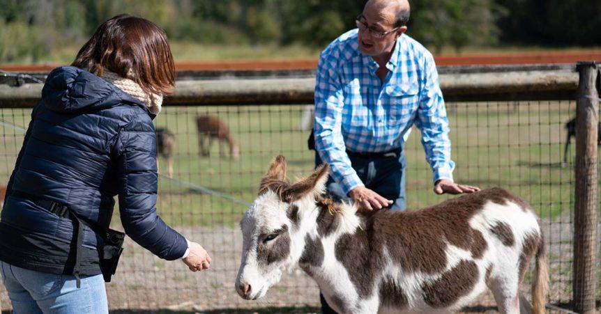 Ken Ramirez Animal Training Coaching